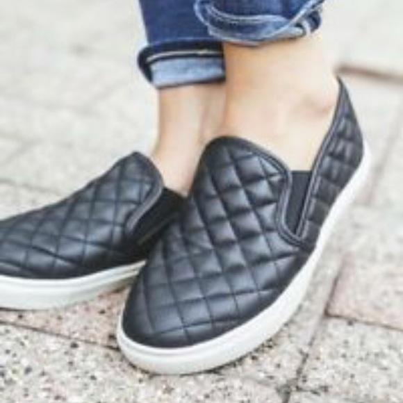 2cce53d6b13 Steve Madden Ecentrcq Slip On Sneakers
